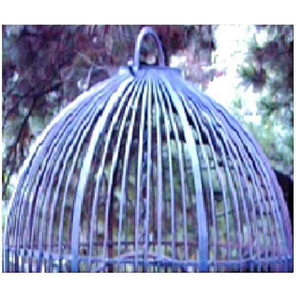 Wrought Iron Birdcage XL top close up